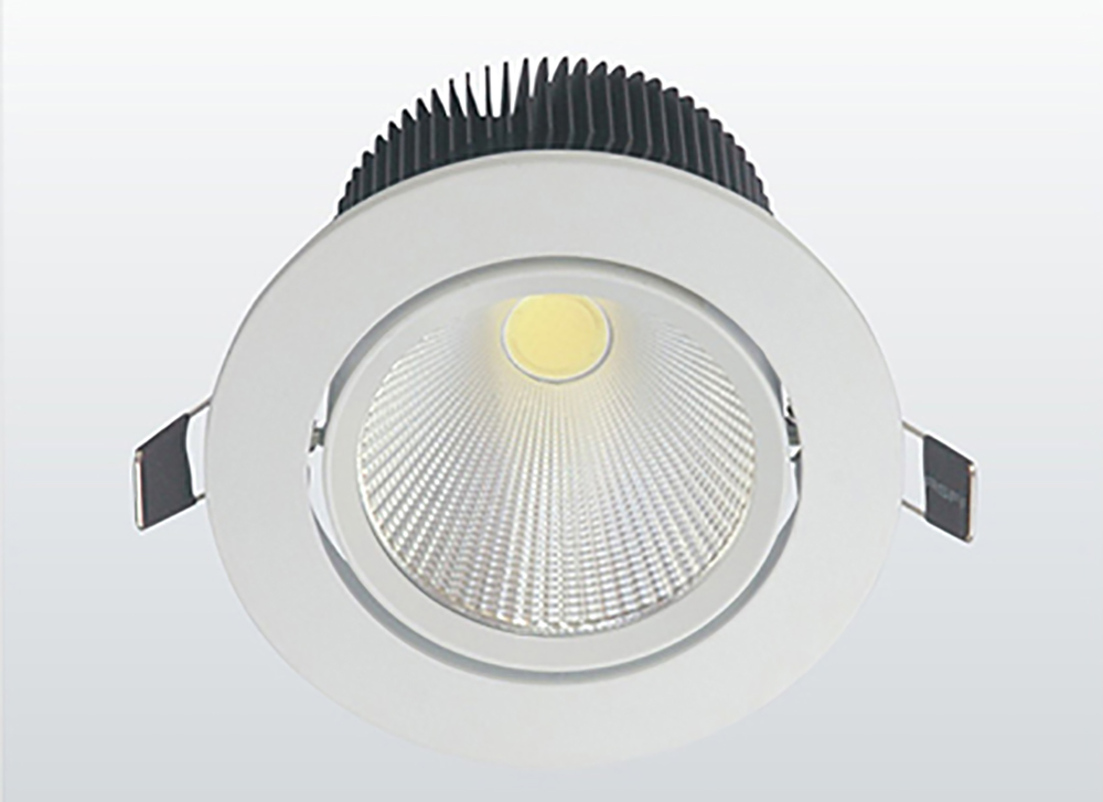 LED COB Down Light (2)