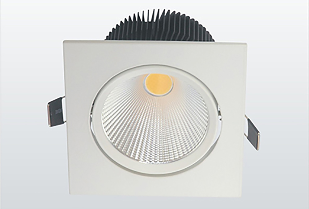 LED COB Down Light (3)